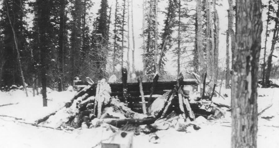 Cabin Of Albert Johnson