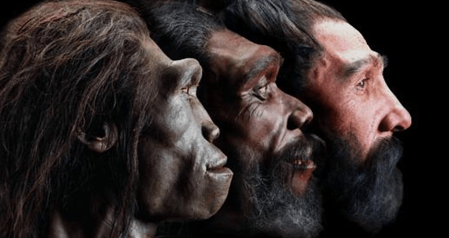 Researchers Traced The Ancestral Homeland Of Modern Humans To Botswana