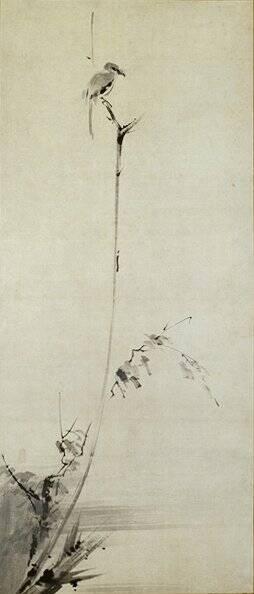 Kobokumeigekizu Shrike Tree Musashi