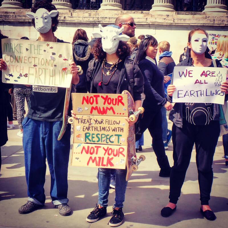 Vegan Earthling Protestors