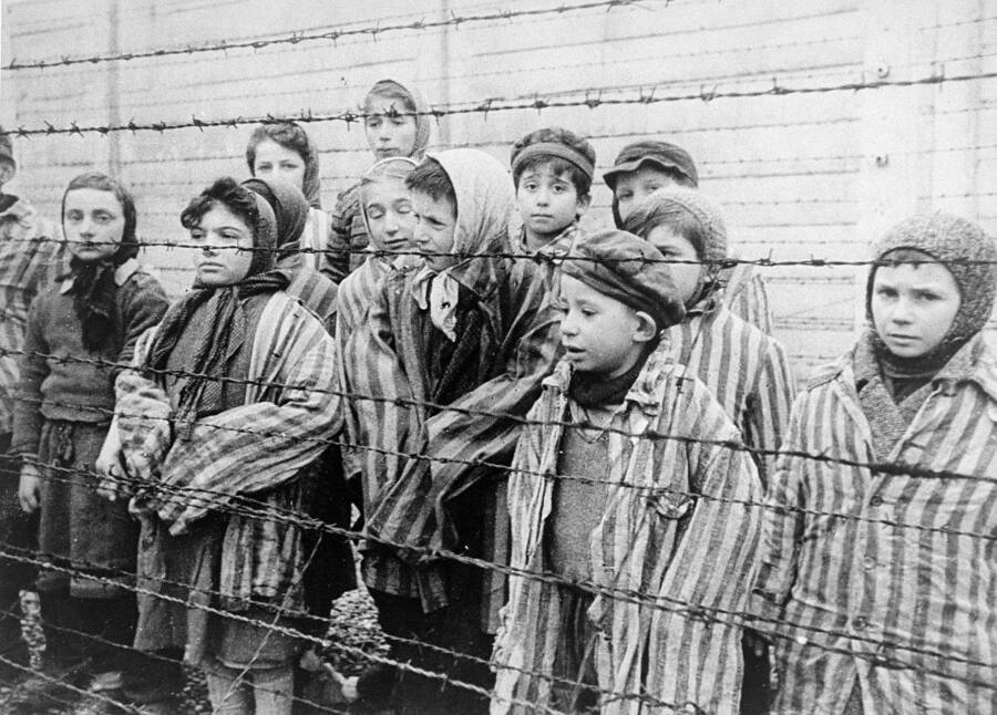 Children Liberated From Auschwitz