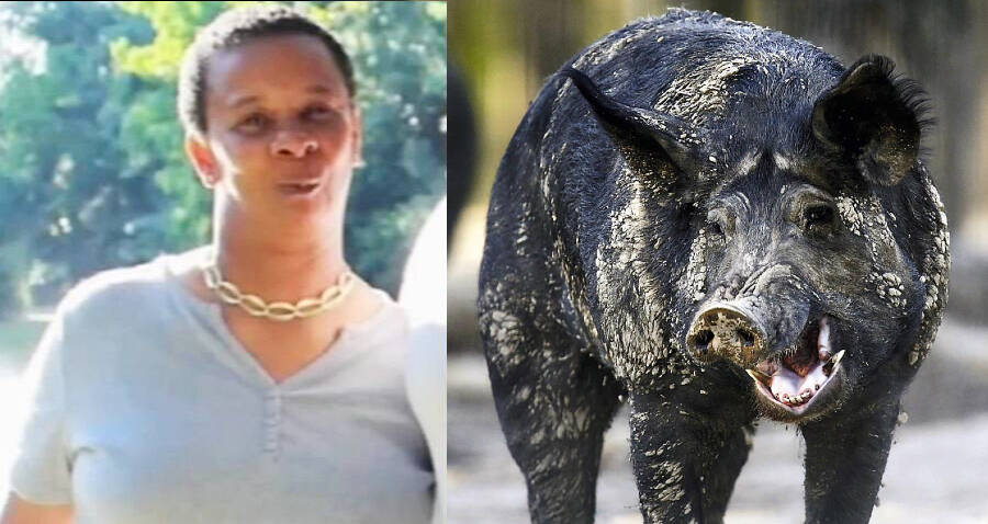 59-Year-Old Texas Woman Killed By Feral Hogs In Front Yard