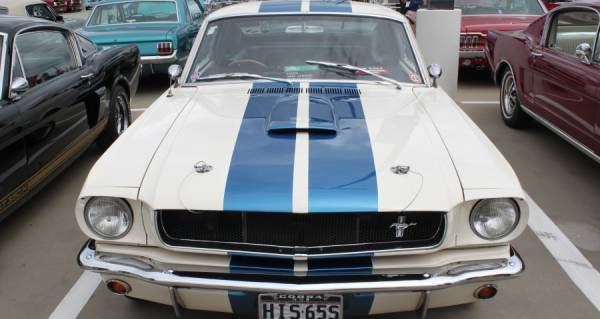 Shelby Ford Mustang 1965