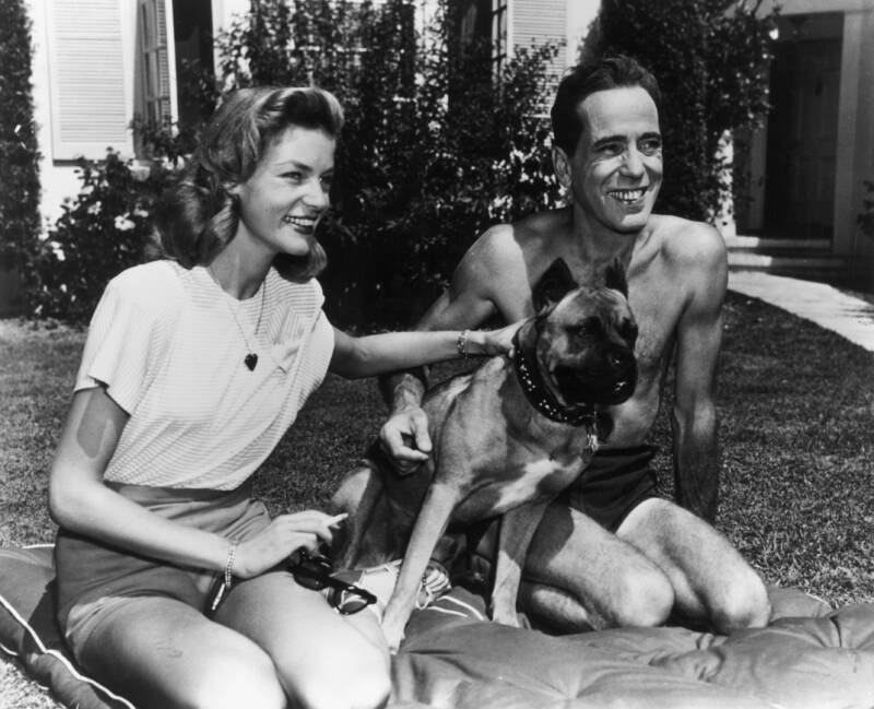 Lauren Bacall And Humphrey Bogart With Their Pet Dog