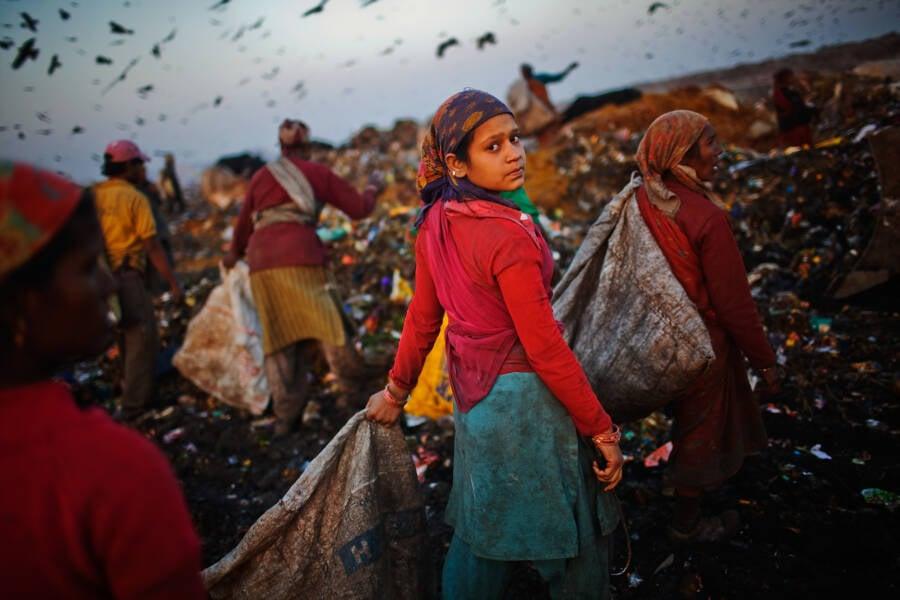 Delhi Landfill Site Pickers