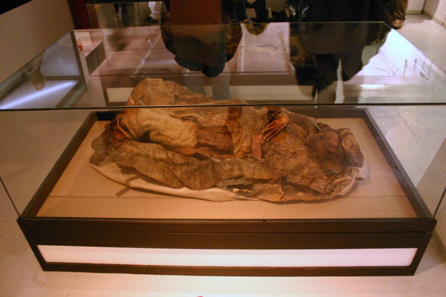 A Qilakitsoq Mummy On Display