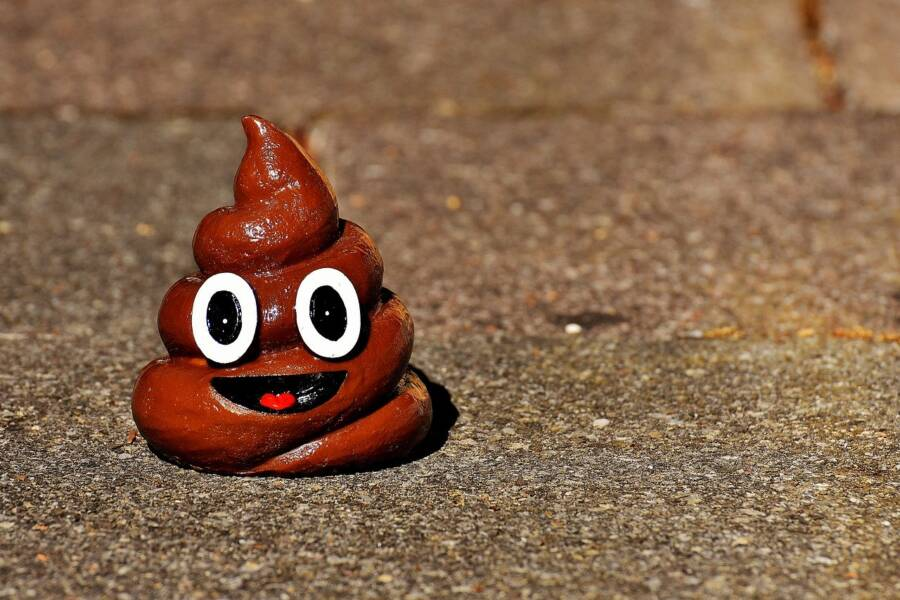 San Francisco S Poop Infested Streets Are Now Getting A Weekly
