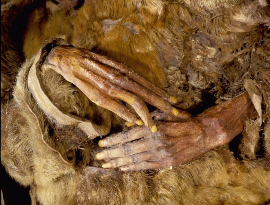 Qilakitsoq Mummy Fingernails