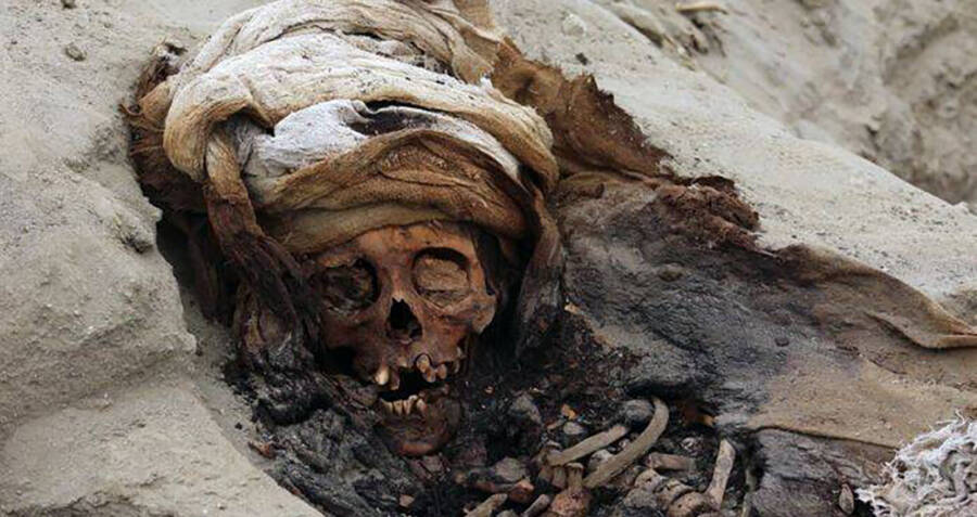 skull-of-a-peruvian-child-sacrifice-victim-og.jpg