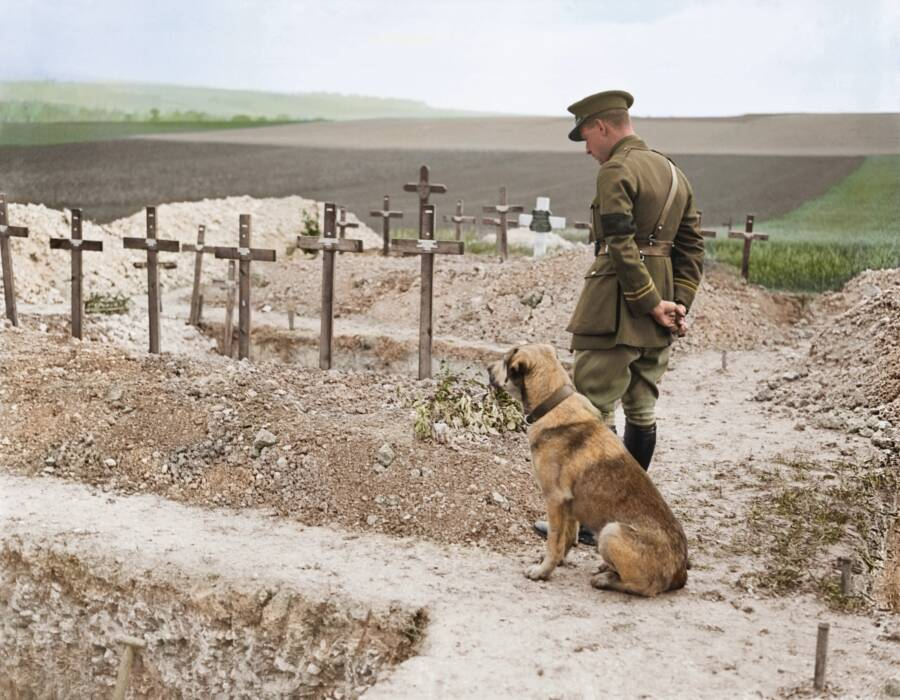 British Officer With His Dog At WW1 Cemetery