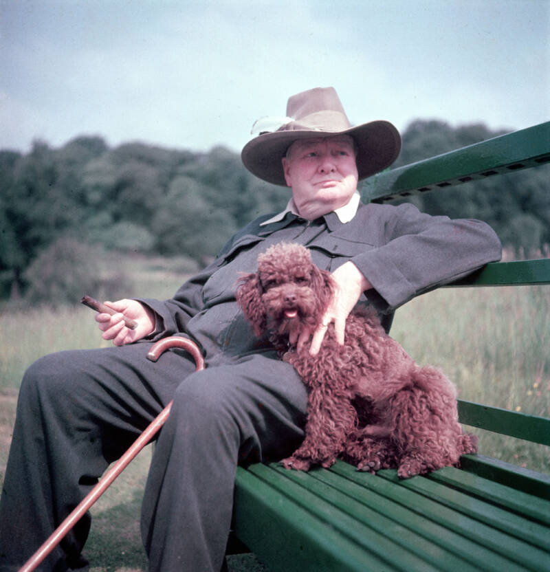 Winston Churchill With His Pet Dog
