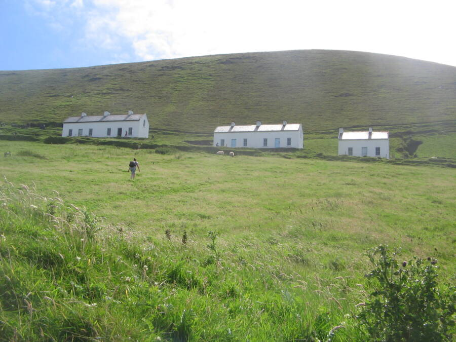 Blasket Guest Cottages