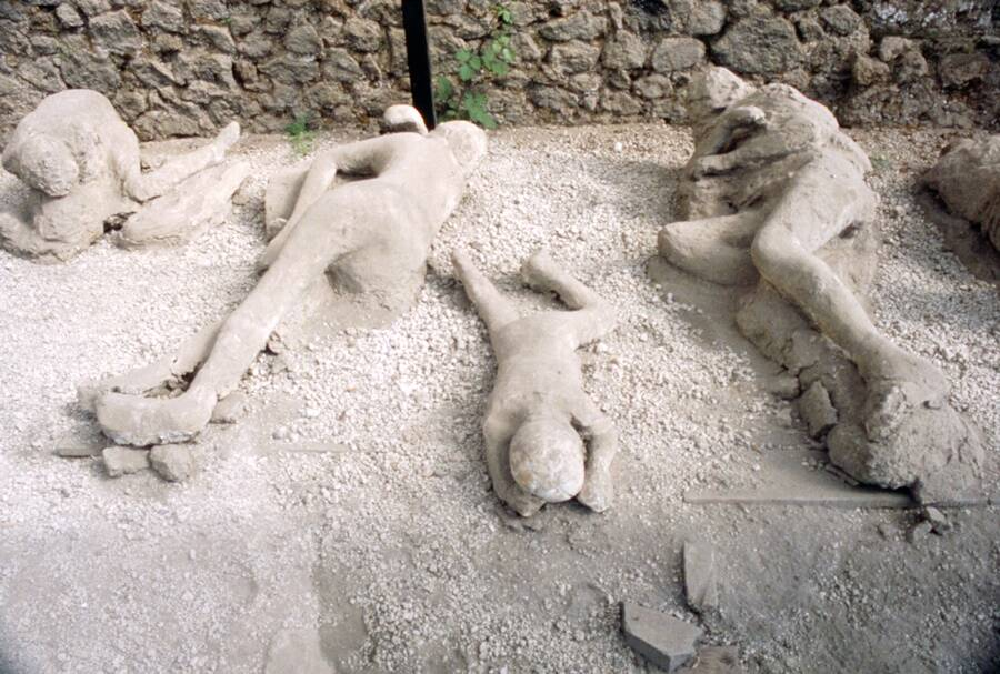 Bodies Of Vesuvius Victims