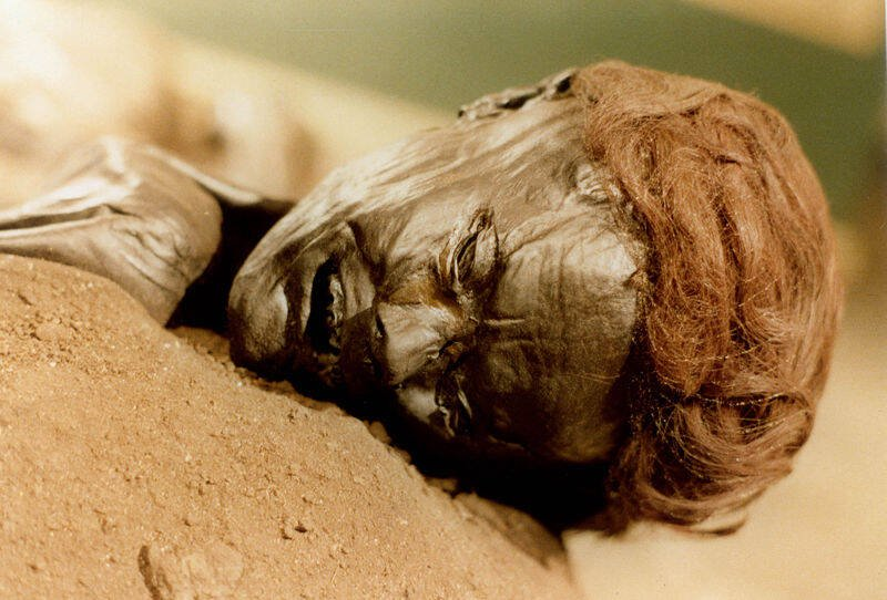 Close Up On The Grauballe Man's Red Hair