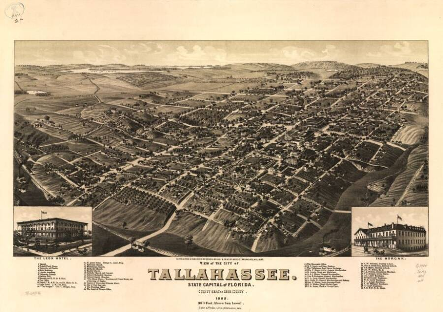 Illustrated Panoramic Maps Tallahassee Florida 1885