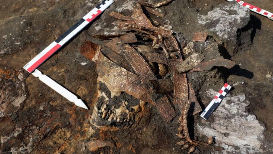 Remains Of A Scythian Warrior Woman