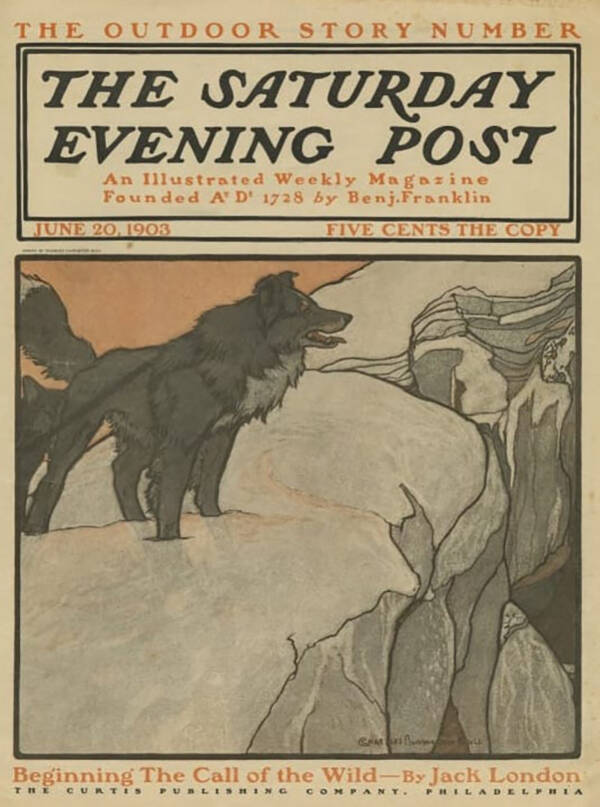 Cover Of 'The Call Of The Wild' On 'The Saturday Evening Post'