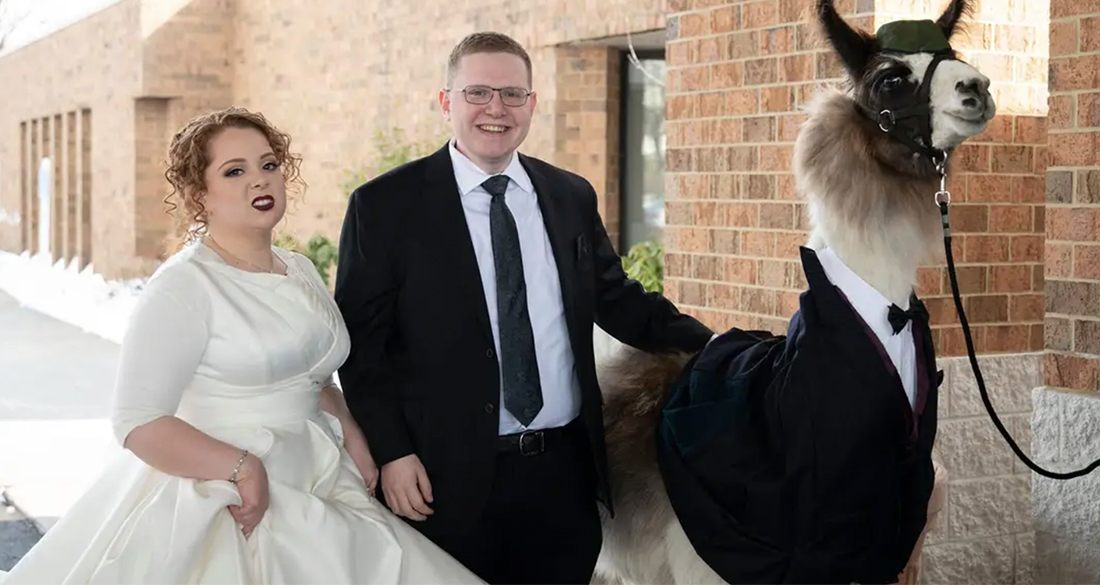 Ohio Man Told His Sister He'd Bring A Llama To Her Wedding As A Joke — Then He Actually Did