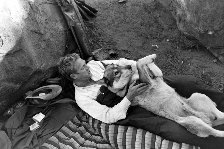 Steve Mcqueen And His Dog