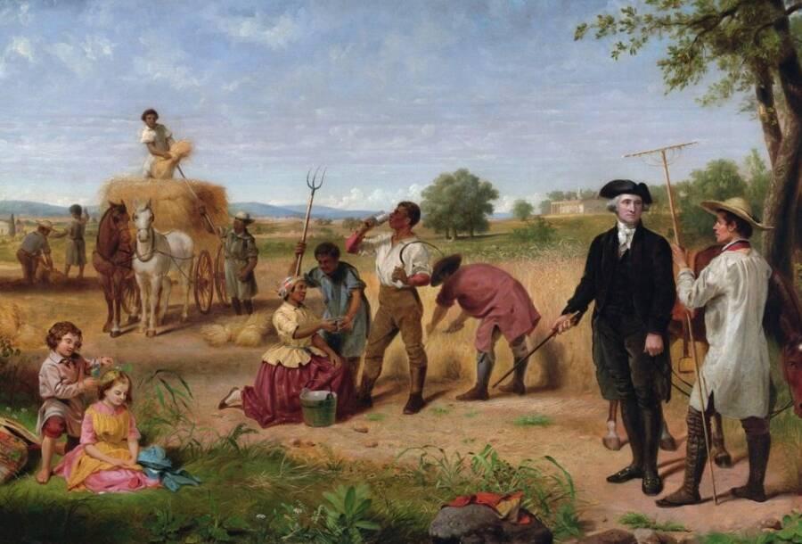 Washington Farmer