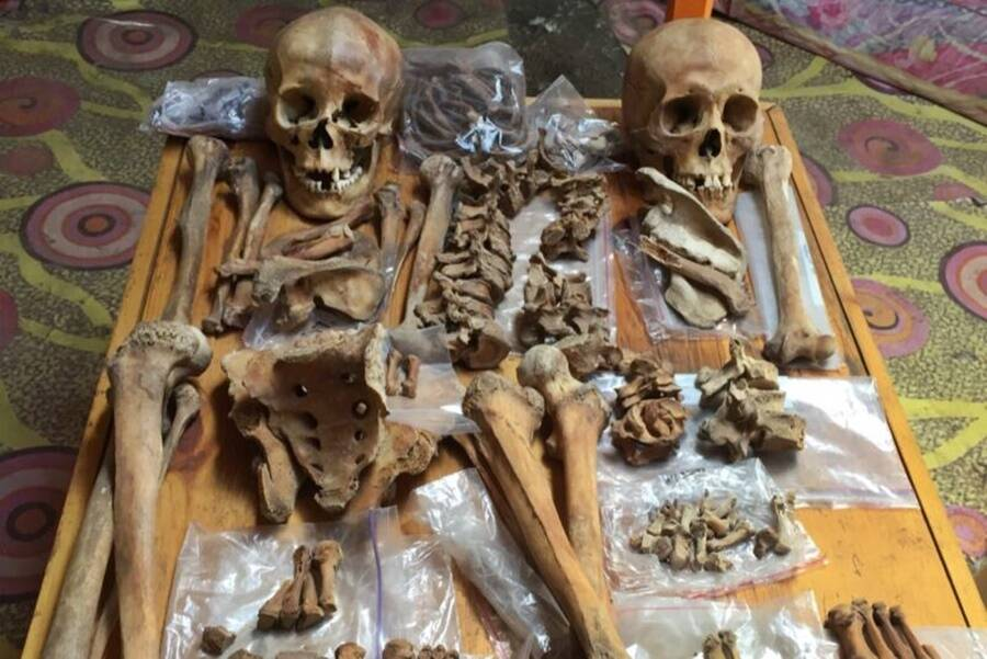 Ancient Mongolian Skeletons