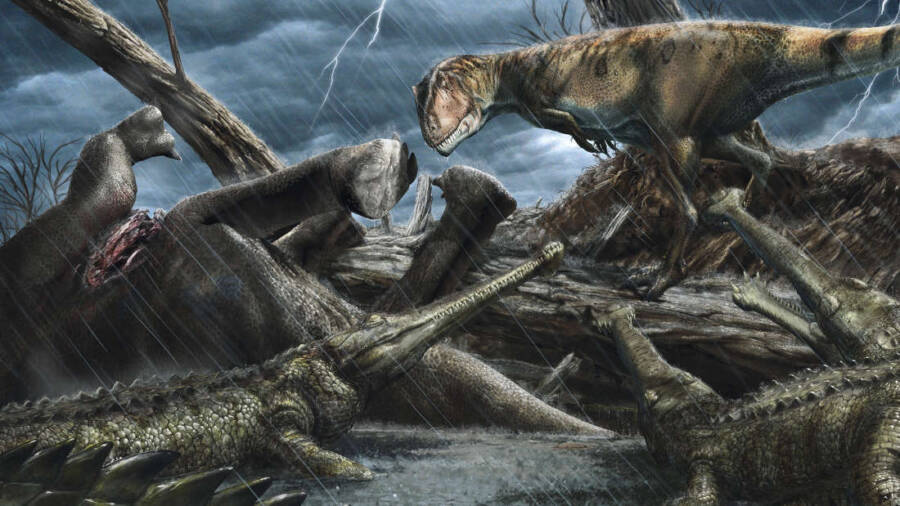Carcharodontosaurus And Elosuchus Illustration