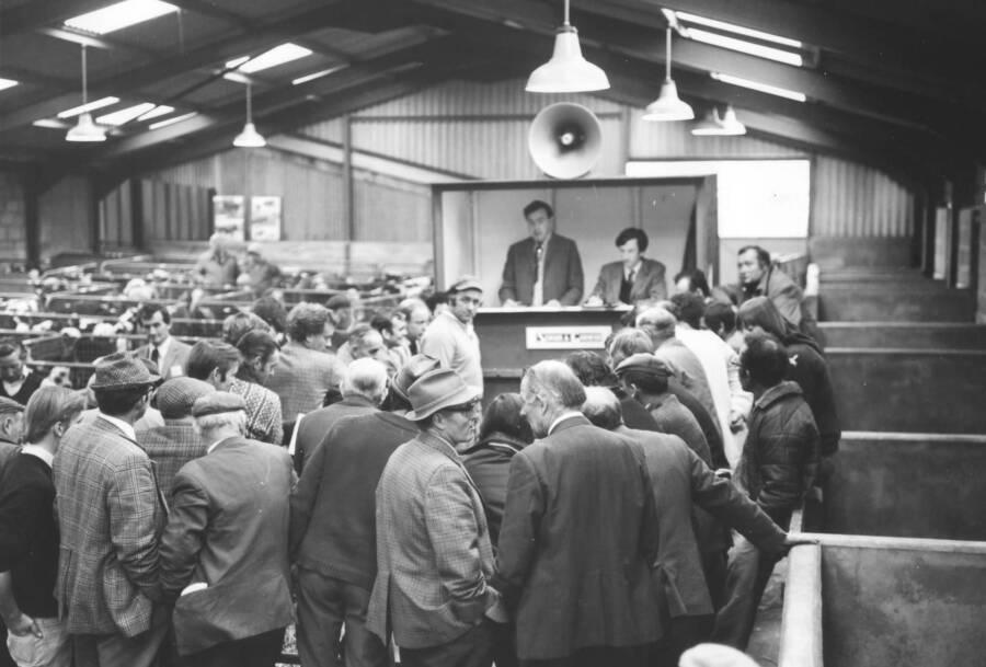 Customers At The Sturminster Newton Mill