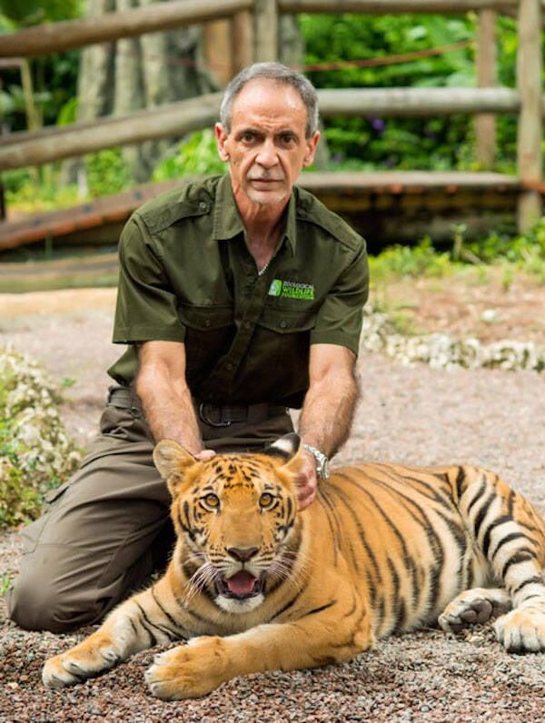 Mario Tabraue And A Tiger