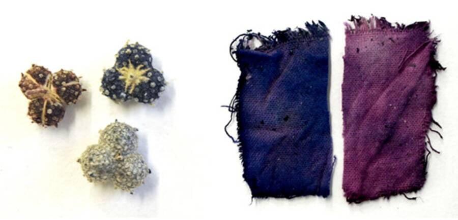 Medieval Ink Recipe