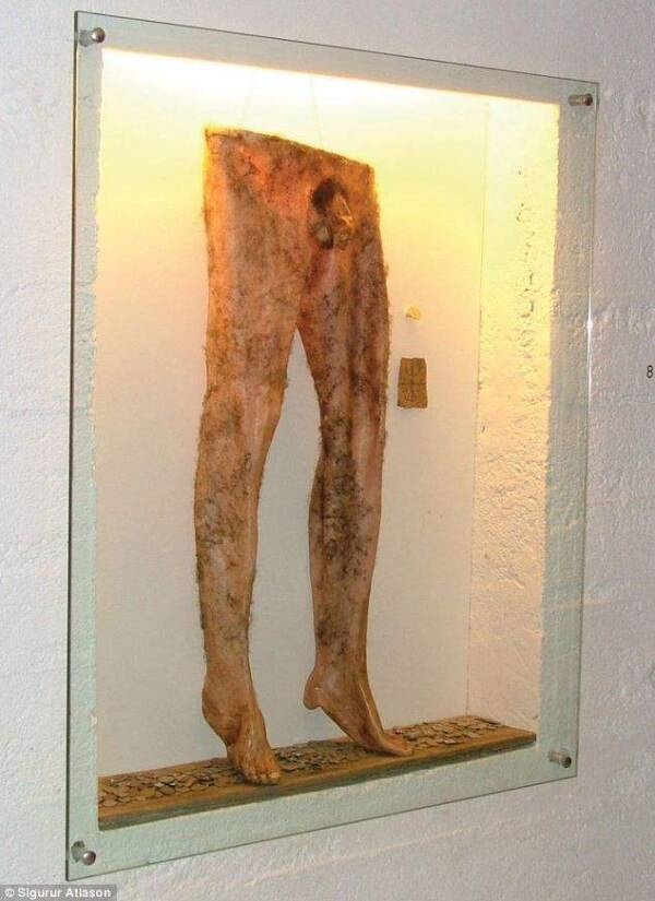 Necropants From Icelandic Sorcery Museum