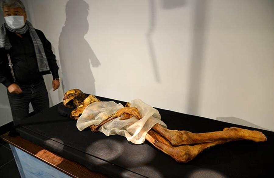 Princess Ukok Mummy