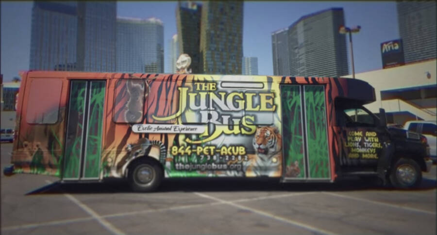 Jeff Lowe's Jungle Bus