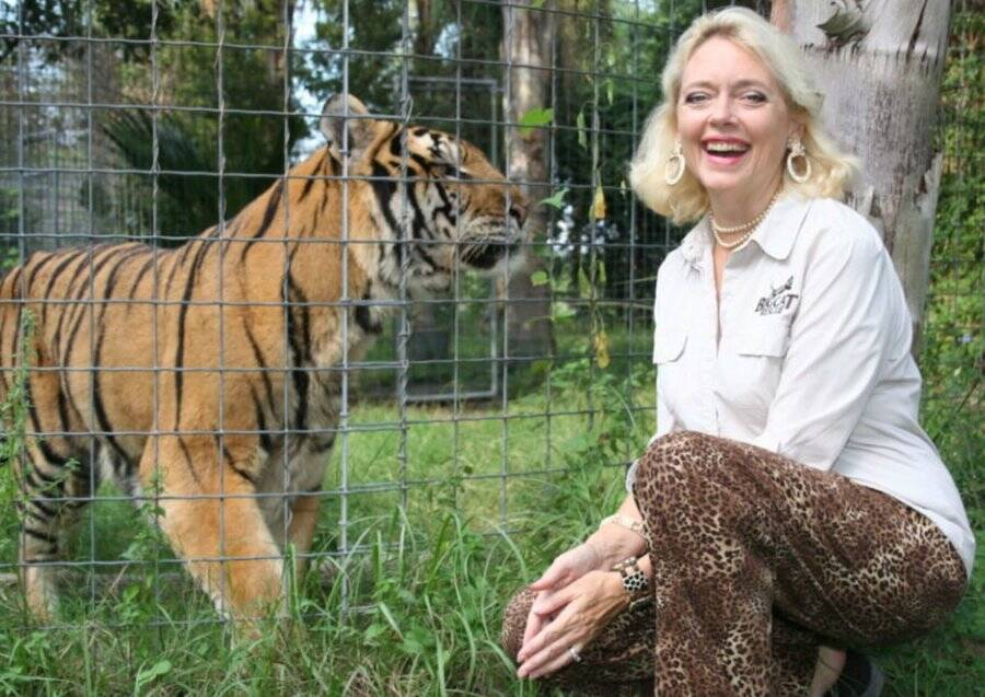 A Tiger Behind A Fence And Carole Baskin