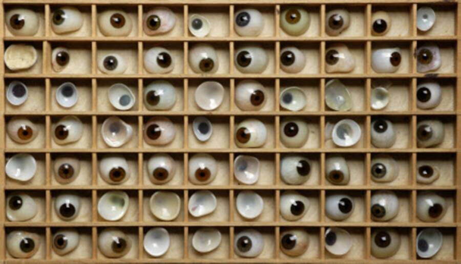 Tray Of Eyeballs At Birminghams Back To Back