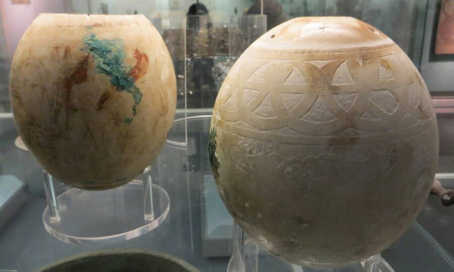 Two Ostrich Eggs On Display