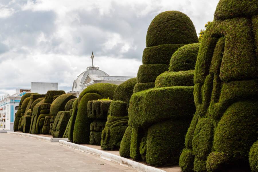 Ecuador Topiary Garden