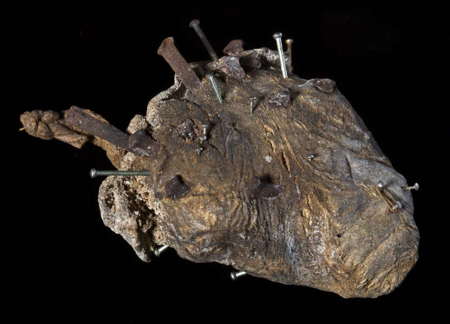 Sheeps Heart With Pins From Pitt Rivers Museum