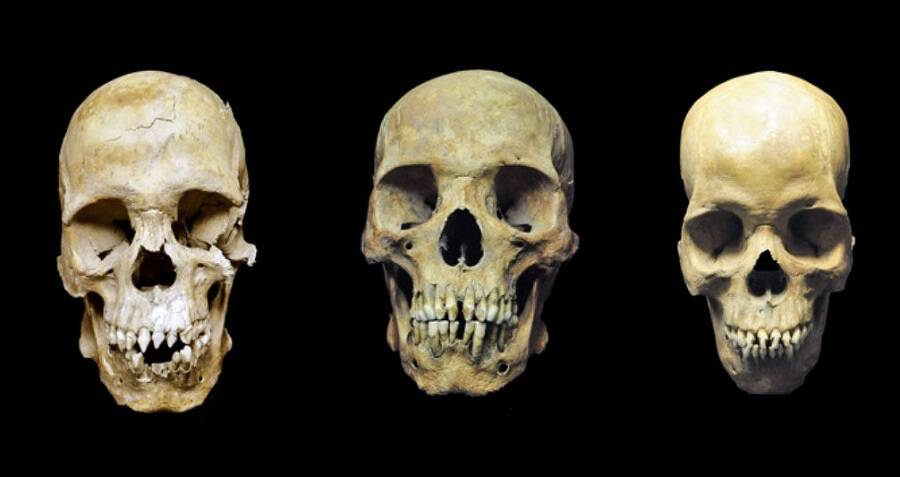 skulls-of-three-slaves.jpg