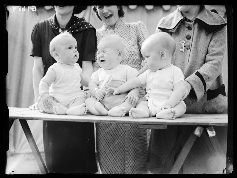 Three Babies Being Judged