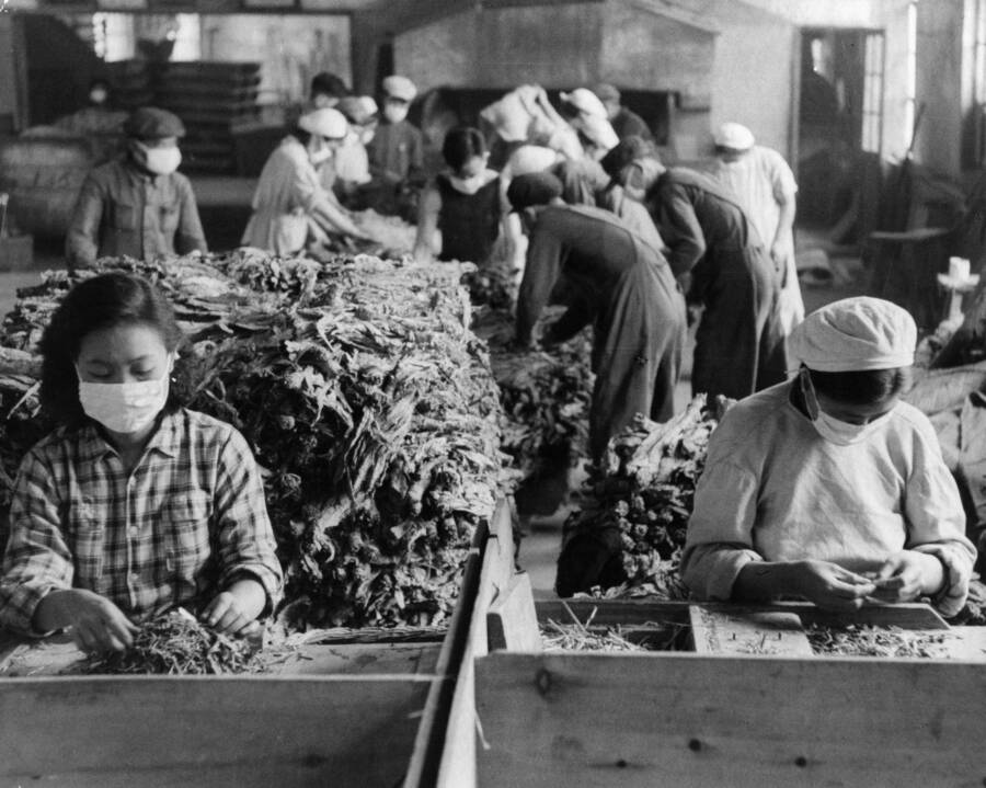 Tobacco Rollers In Manchuria
