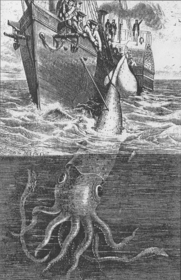 Illustration Of The Alecton Giant Squid