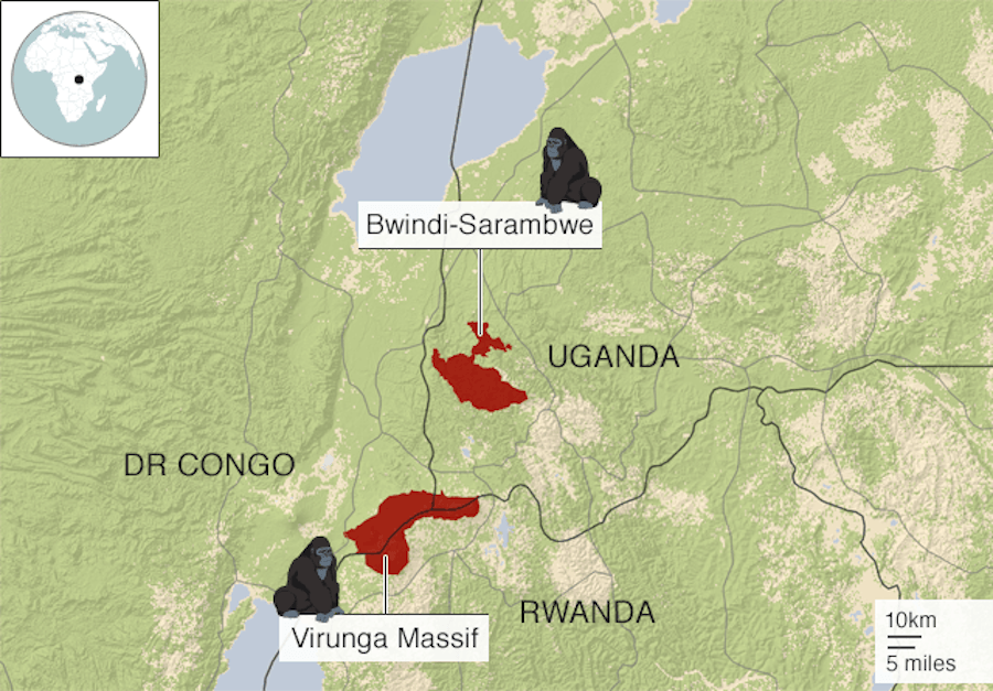 Map Of African Mountain Gorillas