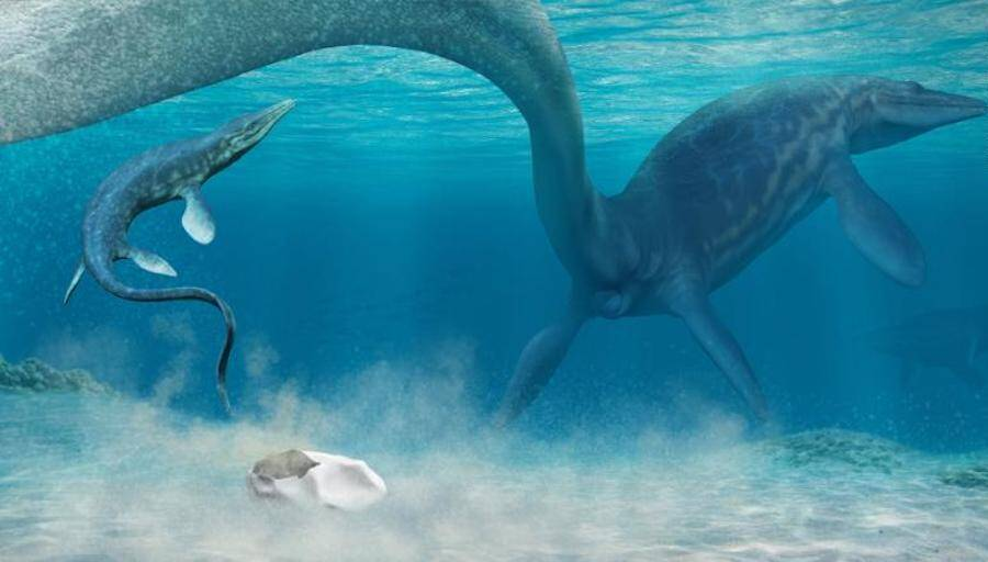 Mosasaur Hatching Underwater Illustration
