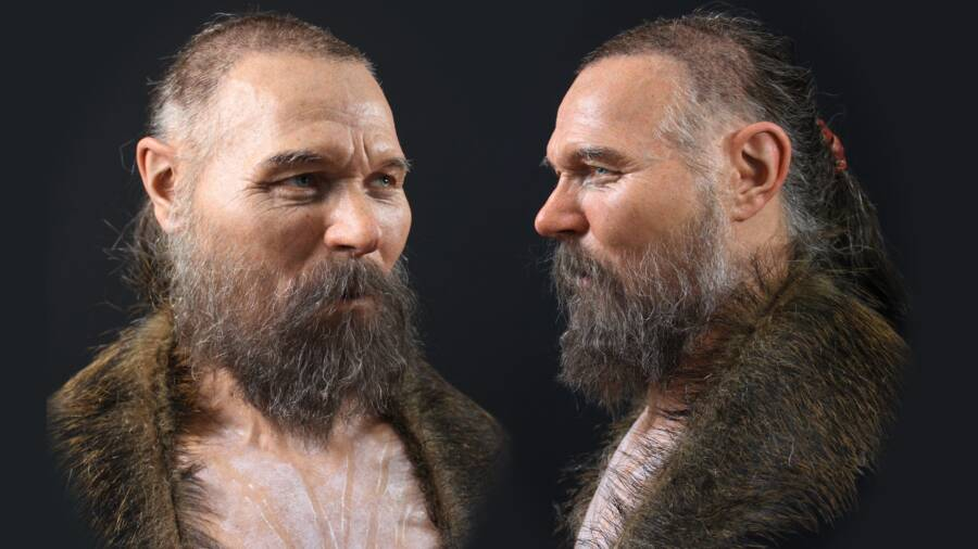 Reconstruction Of Stone Age Man