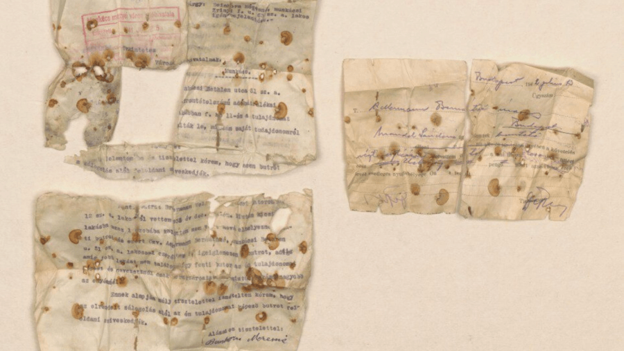 Documents Found In Auschwitz Shoes