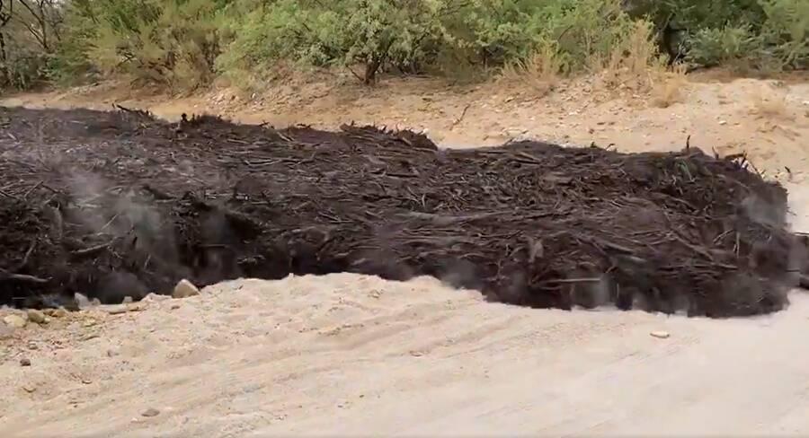 Ash Flash Flood In Tuscon