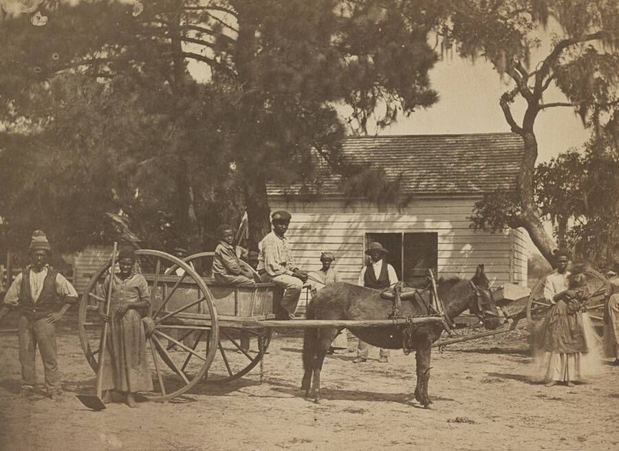Slaves At Edisto Island