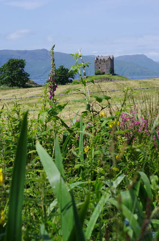 Castle Stalker From The Fields