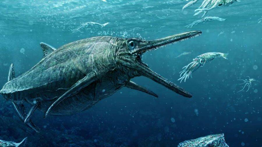 Ichthyosaur Hunting