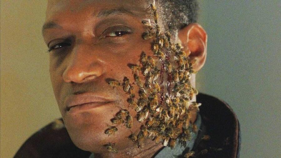 Tony Todd With Bees
